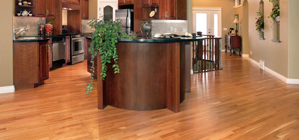 - Increase The Value Of Your Home - Carolina Wood Floors